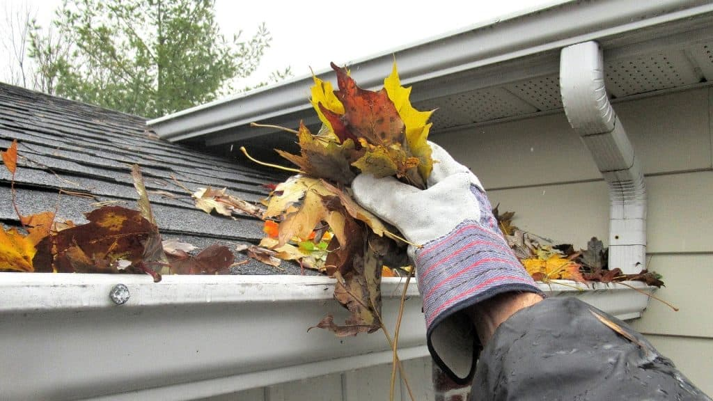 Gutter Cleaning Services Company